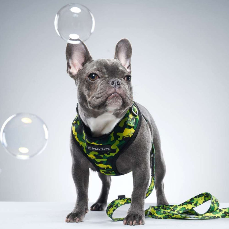 Green Camo Shark Monster Frenchie Dog Leash and Harness