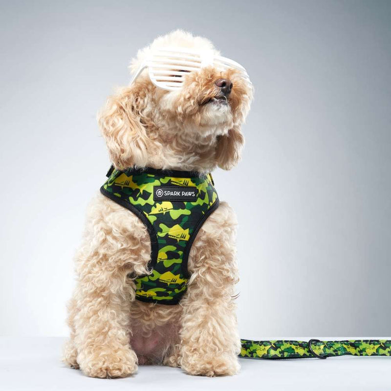 Green Camo Shark Monster Poodle Leash and Harness
