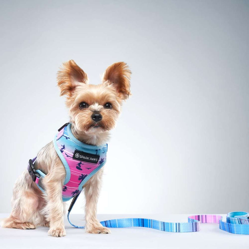 Miami Vice Yorkie Dog Leash and Harness
