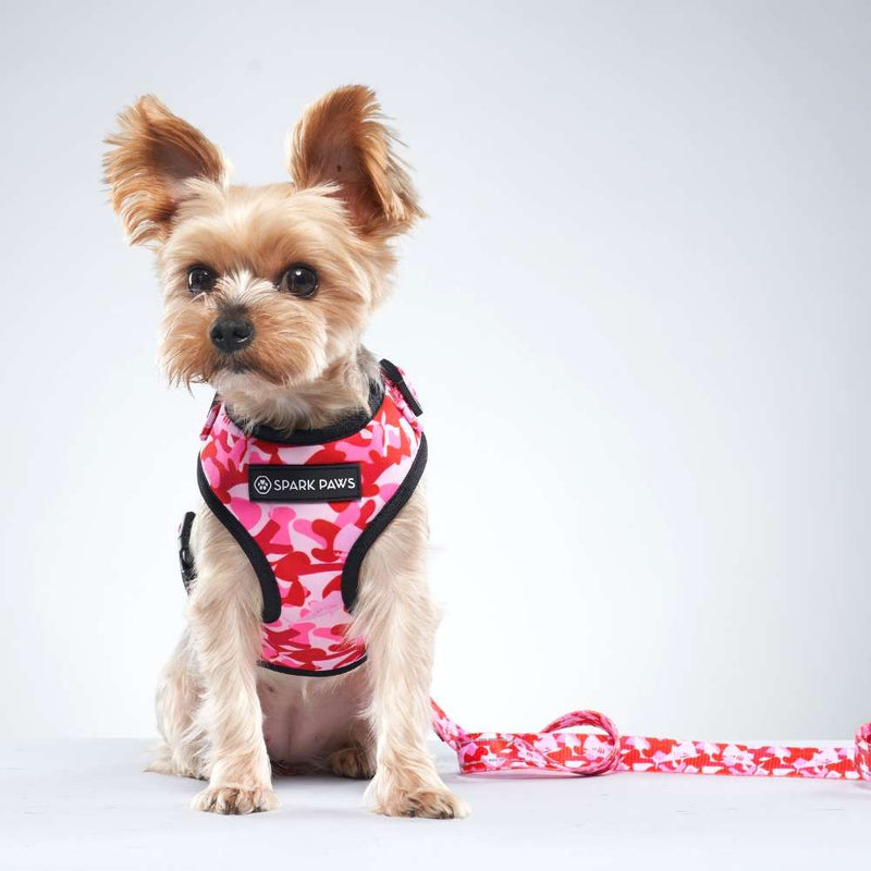Pink Camo Shark Monster Yorkie Dog Leash and Harness