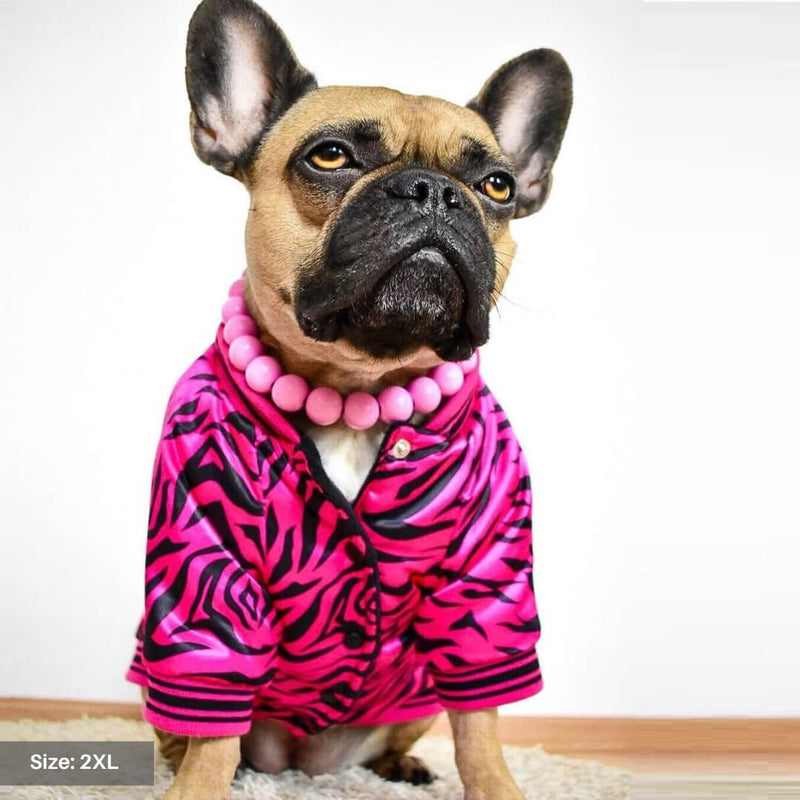 Pink Zebra Dog Bomber Jacket