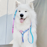 Miami Vice Strap Harness