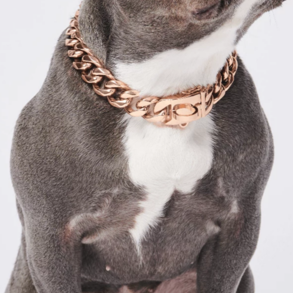 Cuban Link 20mm Rose Gold Dog Chain