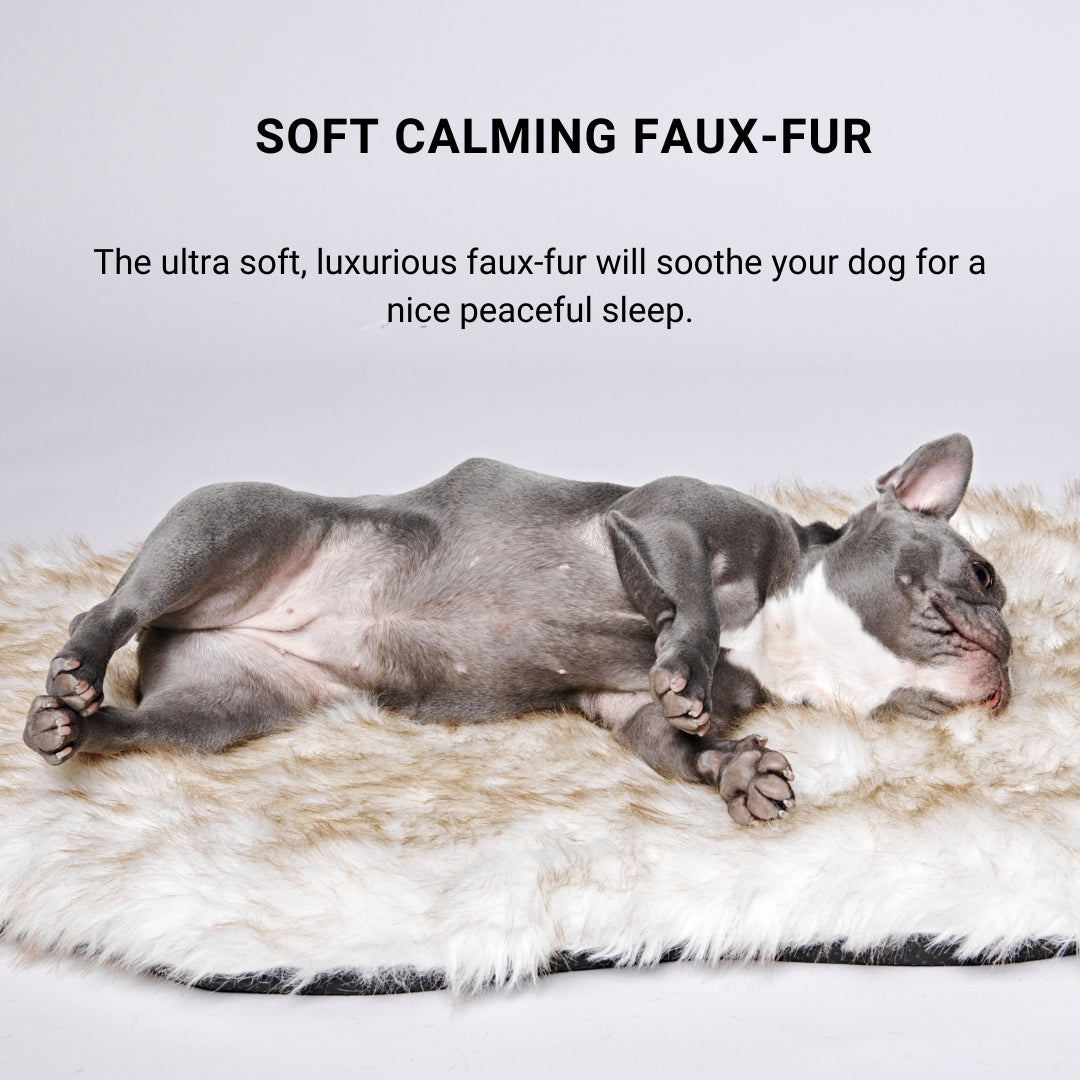 SOFT & CALMING FUR