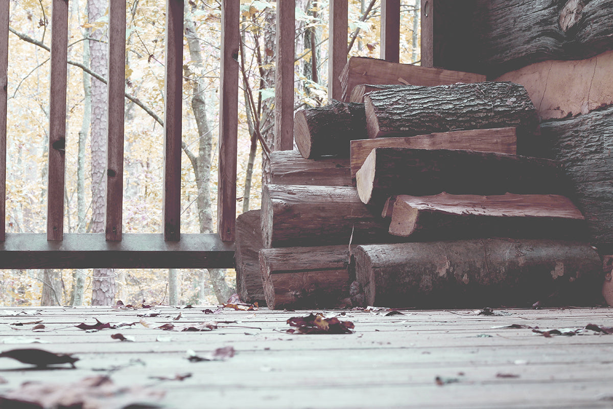 Best Firewood To Burn In Your Fireplace