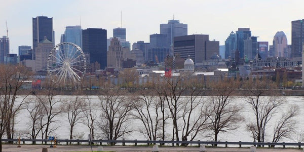 Visit Montréal: Charming, Exotic, Delicious, and a Must-See City