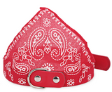 FREE Adjustable Dog Bandana - DealsAmazingDeals.com