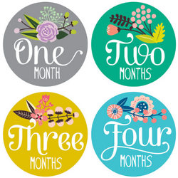 Monthly Baby Growth Stickers - Floral Collection