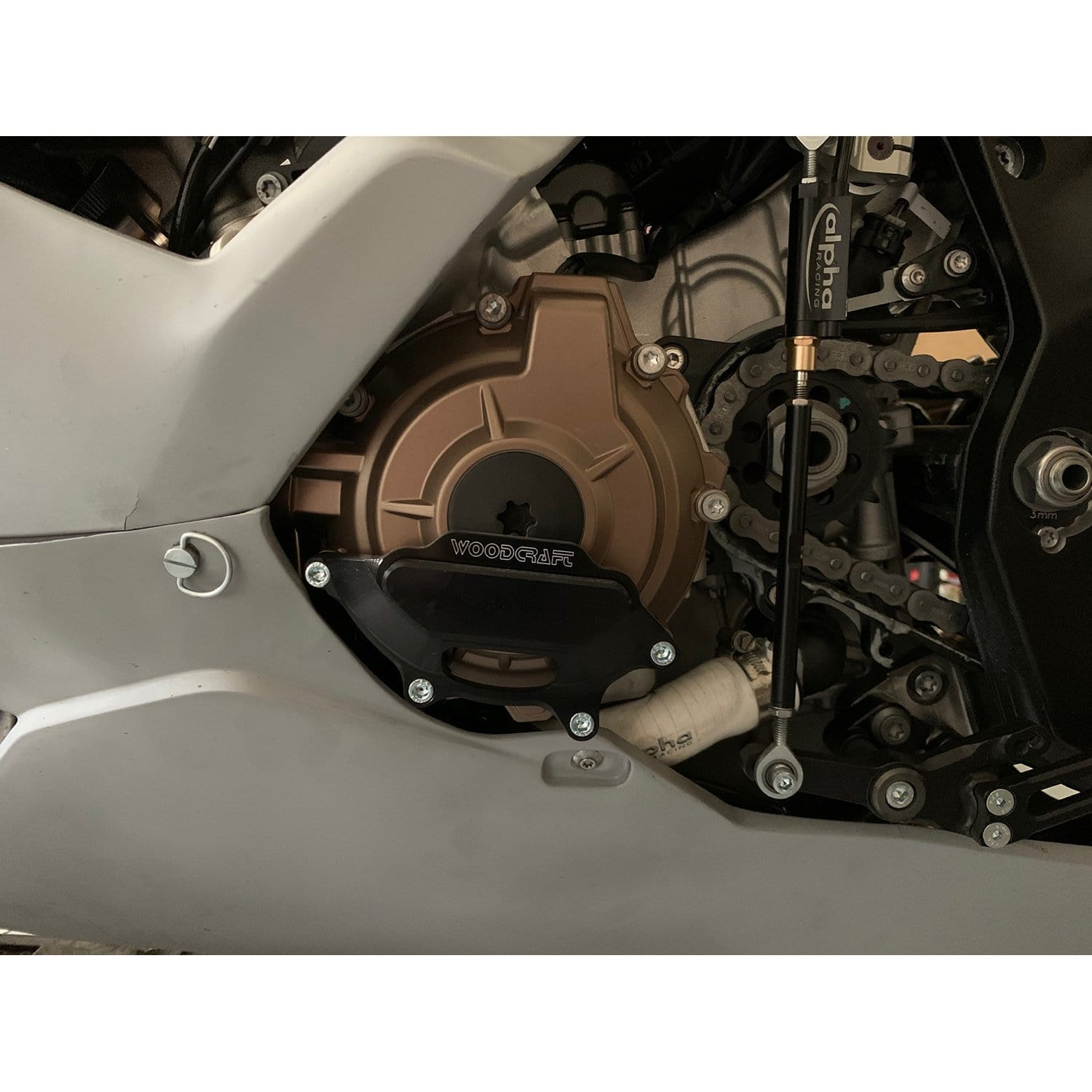 2020 BMW S1000RR Stator Cover Protector