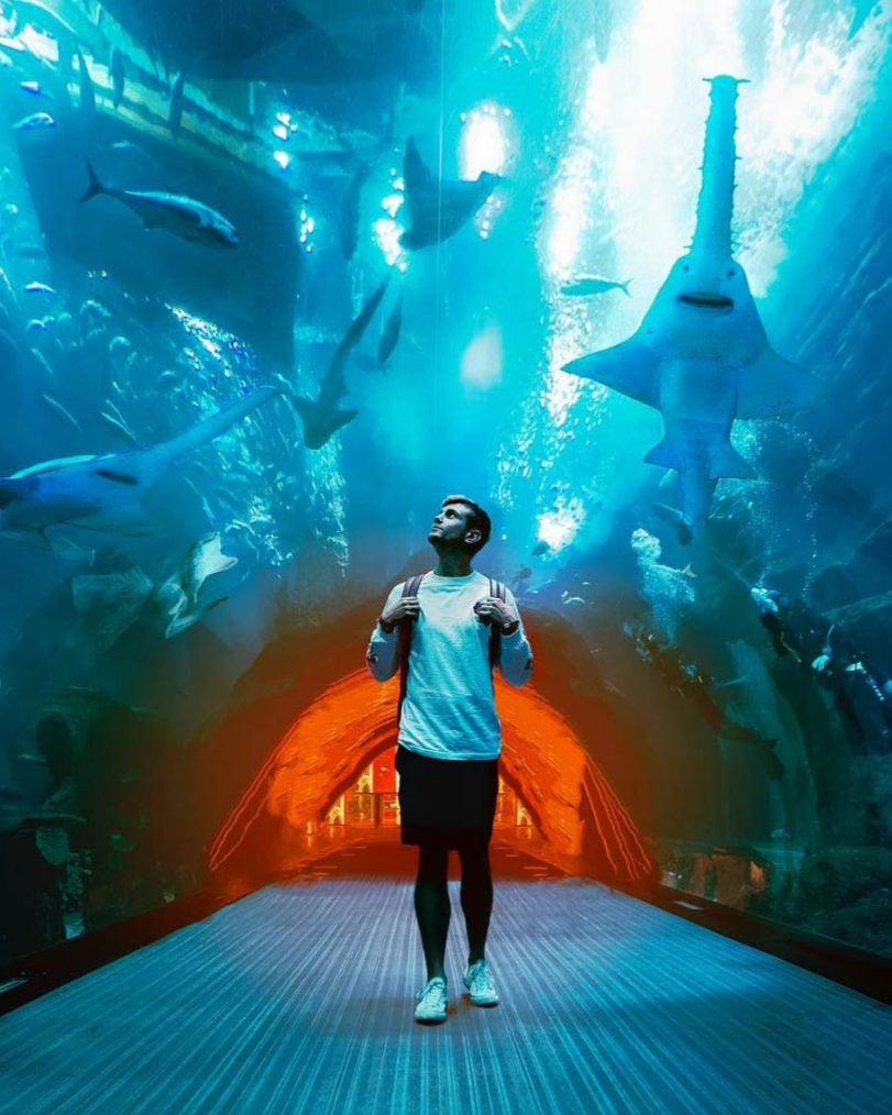 Lost LeBlanc walking through the Aquarium in the Dubai Mall with sharks