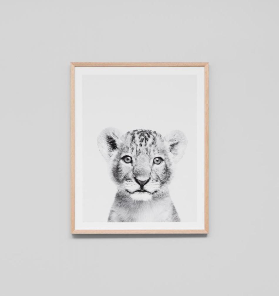 Lovable Cub Canvas Framed 75cm x 75cm