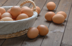 Egg CSA subscriptions