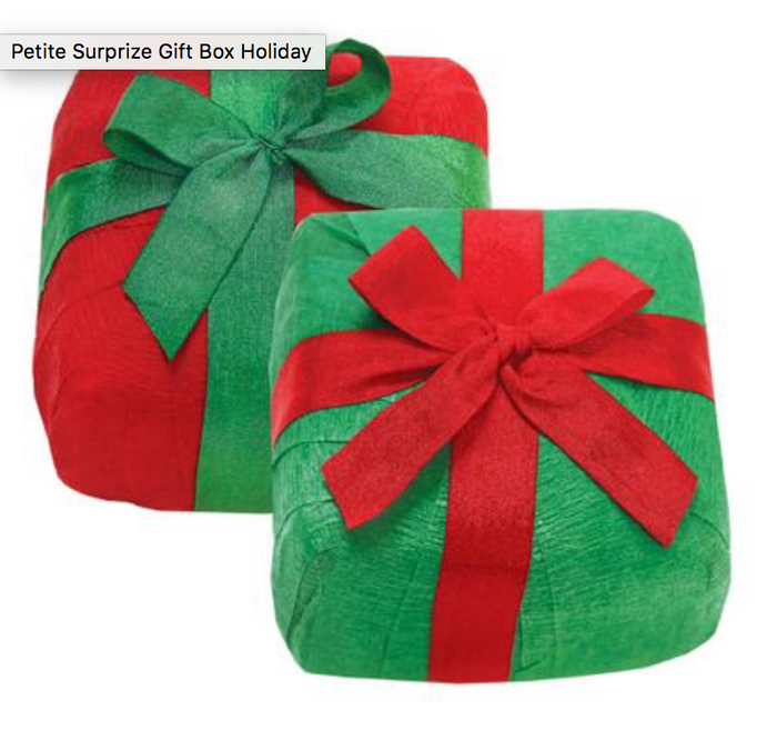 Petite Surprise Gift Box (Holiday)