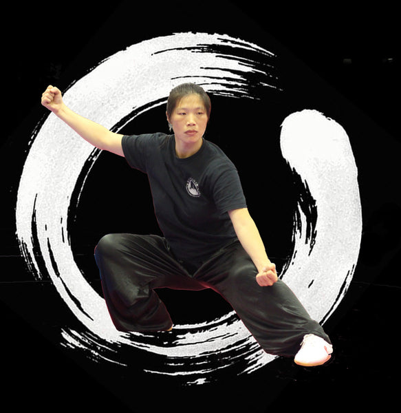 Tai Chi Workshop Classes with Chen Huixian in Las Vegas, February 2017