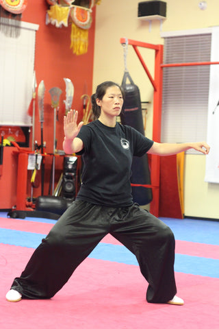 Chen Huixian Las Vegas taiji workshop