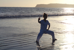 Online Video Tutorials - Learn Tai Chi From Home