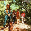 Creedence Clearwater Revival - Green River [LP] (180 Gram) - Urban Vinyl | Records, Headphones, and more.
