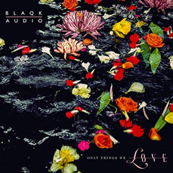 Blaqk Audio - Only Things We Love [LP] (Flower Picture Disc) - Urban Vinyl Records
