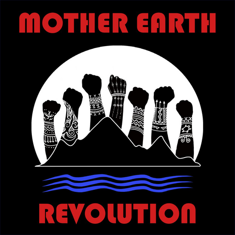 Mother Earth Revolution: Color_Art by Christi Belcourt