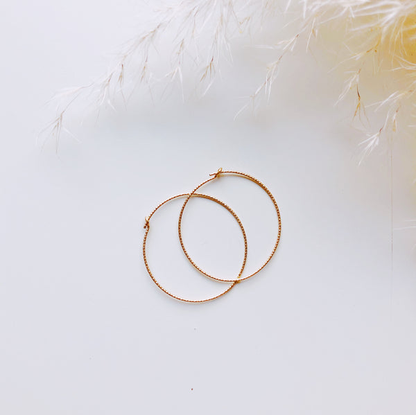 Earrings || Sparkle Hoop