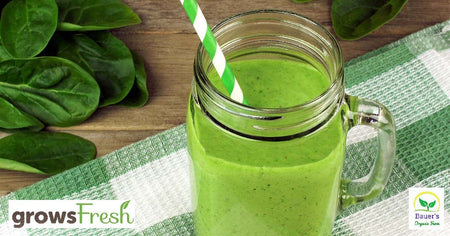 Juicing – Zucchini – health booster