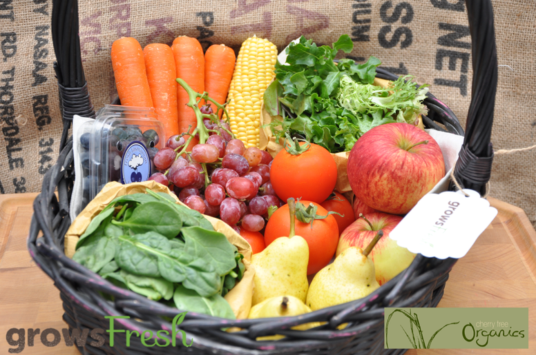 Weekly Small Organic Fruit & Veggie Box - 8 items - Approx. 2.3kg