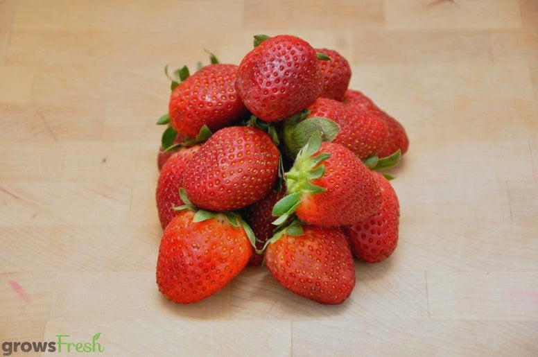 Organic Strawberries - Australian