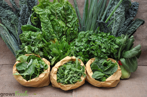Weekly Fresh Super Greens Box - Certified Organic - Australia - 9 items - Approx 2.4kg