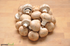 Organic Mushrooms - Swiss Brown - 250g - Australian