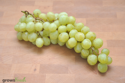 Organic Grapes - White - Meinindee - Seedless - Australian