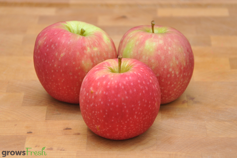 Organic Apples - Red - Australian