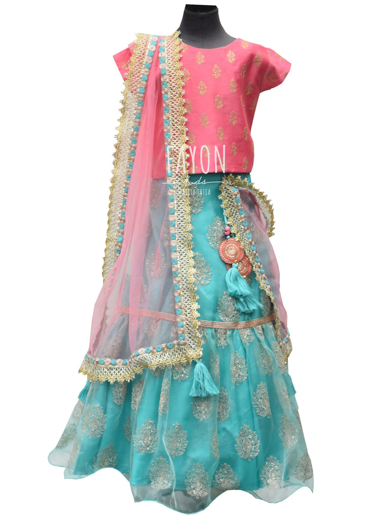 Pink Embroidery Choli with Blue Organza Lehenga - The Ethnic Fix - Dubai - UAE