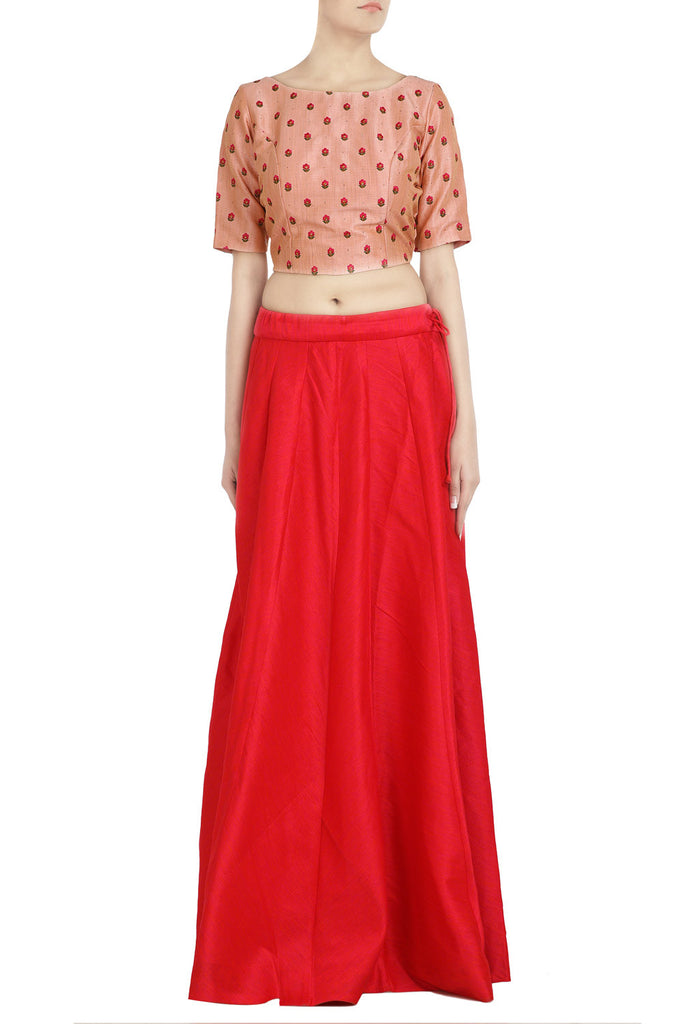 Blush Pink Crop Top with Crimson Lehenga - The Ethnic Fix - Dubai - UAE