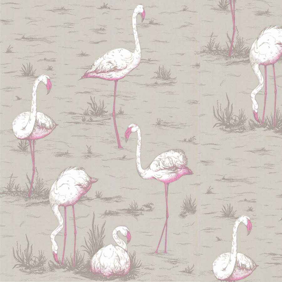 Flamingo Tapet, nougat - Cole & Son
