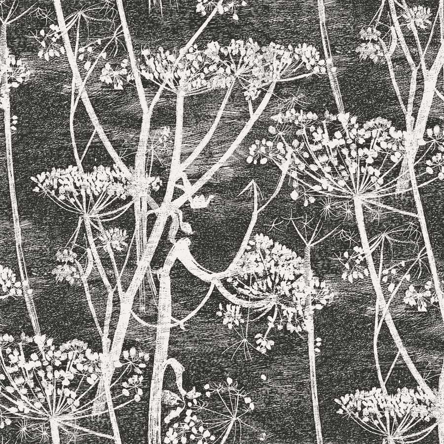 Cow Parsley, Tapet, sort / hvid - Cole & Son
