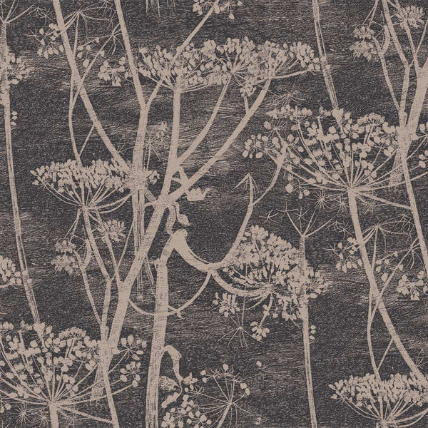 Cow Parsley, Tapet, sort / brun- Cole & Son