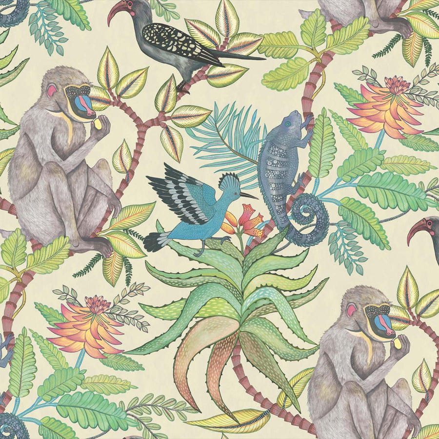 Savuti savanne tapet, cream / multi. Cole & Son