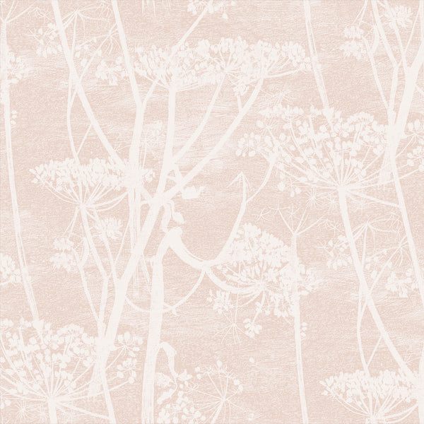 Cow Parsley Tapet, hvid/pudderrosa. Cole & Son