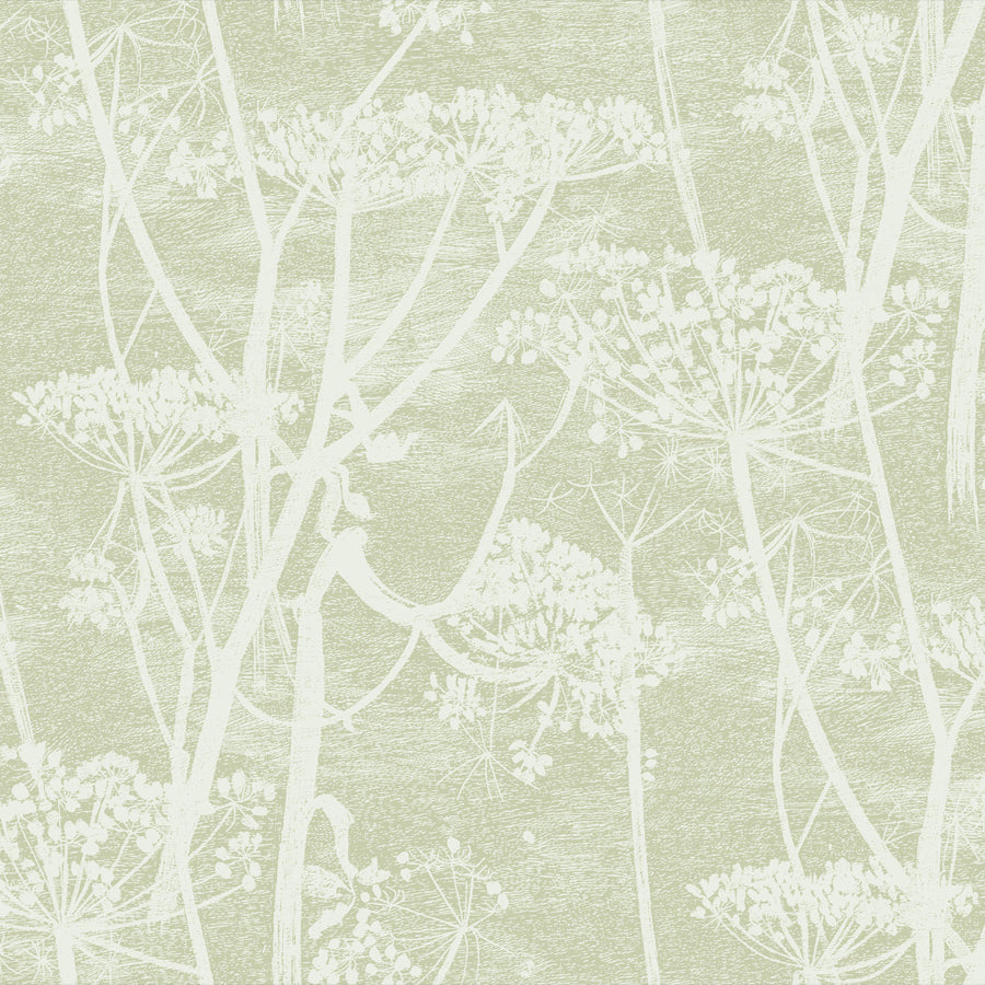 Cow Parsley Tapet, kithvid/lys mos. Cole & Son