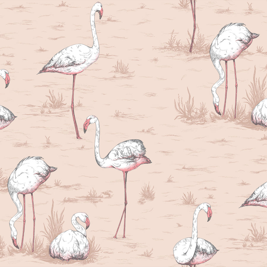Flamingo Tapet, bronzepowder/rosa. Cole & Son