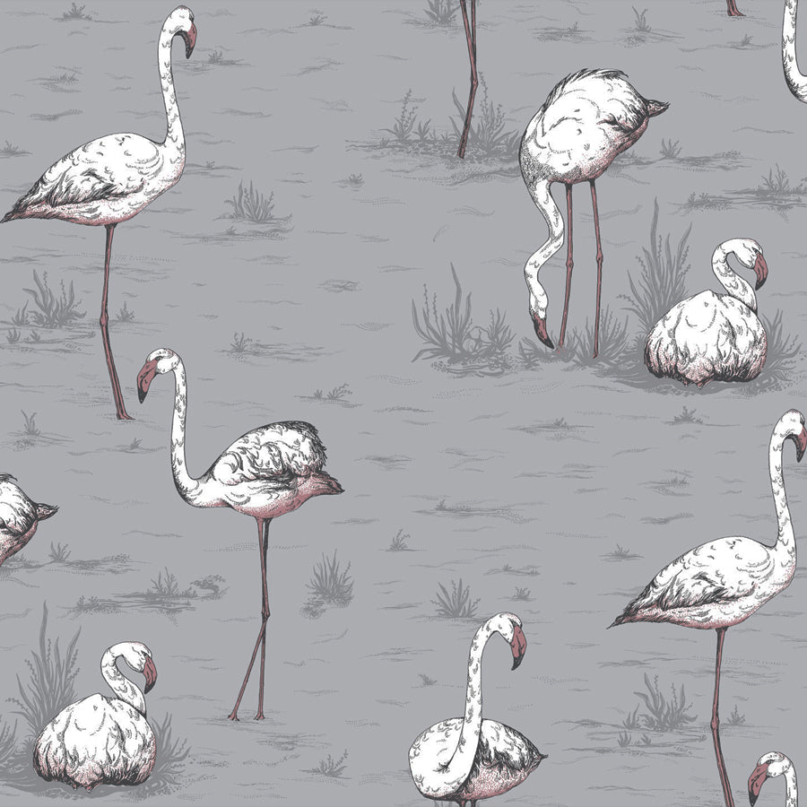 Flamingos Tapet, grå/rosa. Cole & Son