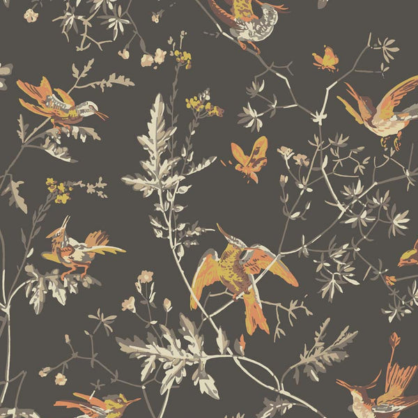 Hummingbird kolibri Tapet. Charcoal/ginger - Cole & Son Icons