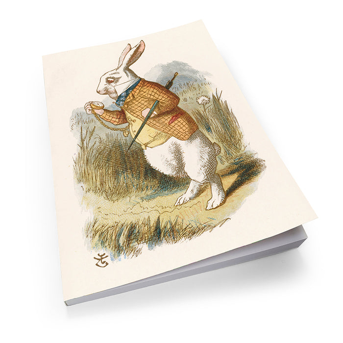 White Rabbit - Soft Cover Book (pack of 5)