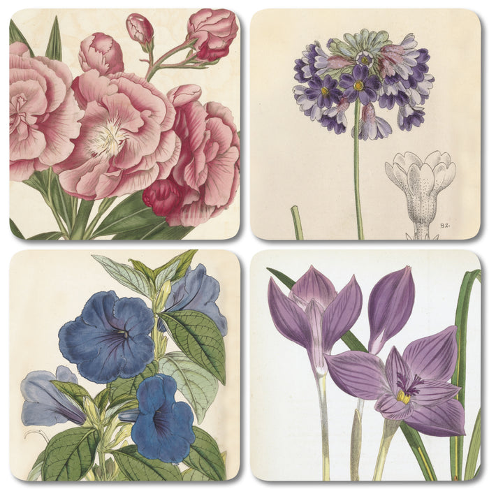 Mixed Floral - Coaster Set of 4<br>(Pack of 4)