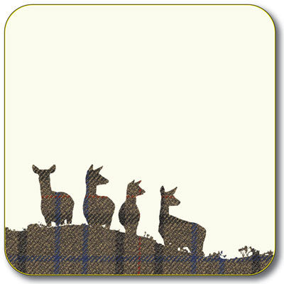 Hinds Coaster<br>(Pack of 10)