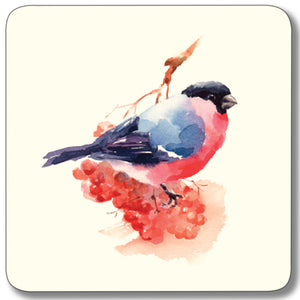 Bullfinch - Coaster<br>(Pack of 10)