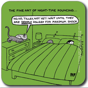 Night-time pouncing Coaster<br>(Pack of 10)