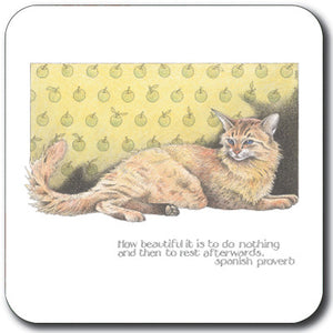 How Beautiful It Is Coaster<br>(Pack of 10)
