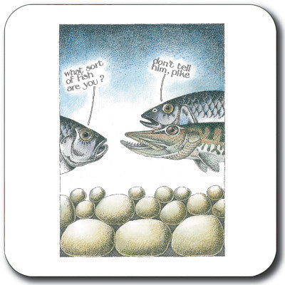 What Sort of Fish Coaster<br>(Pack of 10)