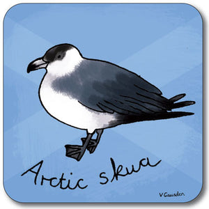 Arctic Skua  Coaster<br>(Pack of 10)
